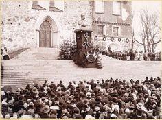 Schoultz on kuvannut Turun keisarijuhlan, jossa Aleksanteri II:n rintakuva paljastettiin tuomiokirkon portailla. Kuvassa maisteri Lagus pitää parhaillaan juhlapuhetta, ja yleisö on asettunut keisaripatsaan ympärille sopivan etäisyyden päähän. Tärkeimmille juhlavieraille on varattu paikat tuomiokirkon edessä olevalle tasanteelle, mutta muu juhlayleisö on sijoitettu portaiden alapuolelle ja Nikolaintorille.