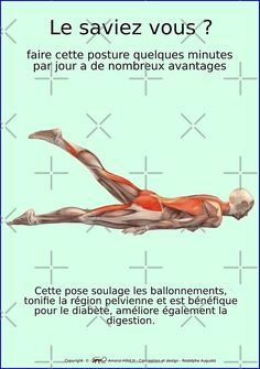 « Planches Musculo-squelettique des positions de Yoga - N°26 » par rodolphe Augusto | Redbubble Yoga Flow, Yoga Meditation, Yoga Fitness, Namaste Yoga, Yoga Positions, Yoga Poses For Beginners, Excercise, At Home Workouts, Pilates