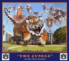 auburn tiger eyes - Google Search