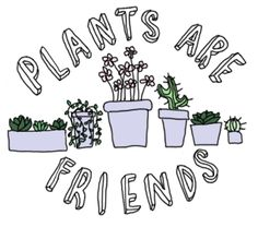 Plants are friends. :)