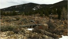 Gros Ventre Landslide | Gros Ventre Landslide-Take right of to the right of the trail. The ...