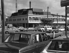 Wellington City, City Library, Latitude Longitude, Apple Pear, Libraries, Cambridge, New Zealand, Terrace, Past