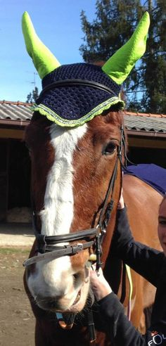 Base colore n. 58, bordo n. 87, strass, orecchie realizzate in stoffa stile damascato. In foto il nostro Silver Chat (Sella Italiano) #flyveil #flybonnet #horse #pony #cuffiettecavallo #cavallo #equestrian #equestrianstyle #equinestyle #horsewear #earbonnet #earnet #horsefashion #horselover #jumper #strass #SilverChat