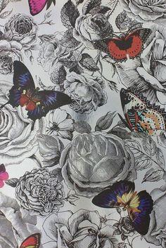 21 best osborne and little wallpaper images osborne little rh pinterest com