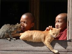 Monks with cat