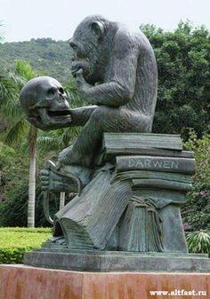Darwin and Horatio Amazing Street Art, Amazing Art, Outdoor Sculpture, Sculpture Art, Fun With Statues, Animal Sculptures, Land Art, Fractal Art, Public Art