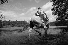 Американский художник бегает с лошадьми по полям в чем мать родила / Украинский бизнес ресурс UBR.ua