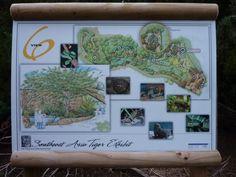 San Diego Zoo Safari Park Tiger Trail (Version 2.1) San Diego Zoo, Southeast Asia, Safari, Trail, Gallery Wall, Park, Design, Parks, Design Comics