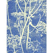 Buy Cole & Son Cowparsley Wallpaper Online at johnlewis.com