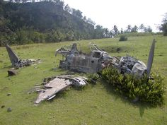 plane wreck in a meadow