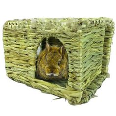 Handcraft Woven Grass Hamster Nest  Price: 45.99 & FREE Shipping   #ShopGetPet #Allthingspet#Onlineshopping #Weloveonlineshopping #Doggiebeds #Doggieclothes Rodents, Hamsters, Pet Rabbit, Chinchilla, Animal Jewelry, Cat Toys, Dog Bed, Nest, Handmade