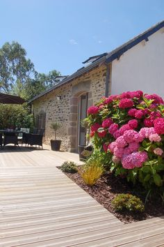 Côté Maison-Terrasse-Hortensias (se plaisent en Bretagne, ils en existent des…