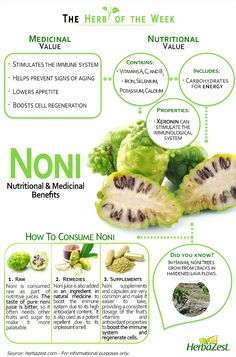 HerbaZest - Infographic - Noni. Learn more about its fabled medicinal value. Tags: #herbazest #naturalmedicine #infographic #health