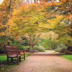 Royal Botanic Garden Edinburgh, Scotland, UK