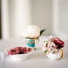 Flowers in teacups-flowers-500x500.jpg 500×500 pixels