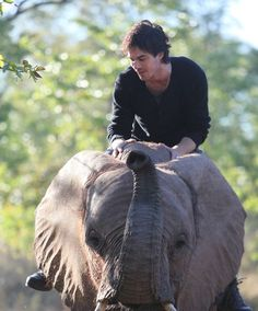 World Animal Day is October 4th, and we're honoring it by supporting the Ian Somerhalder Foundation's Animal Sanctuary in Louisiana.