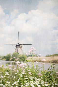 Charming Dutch windmill.