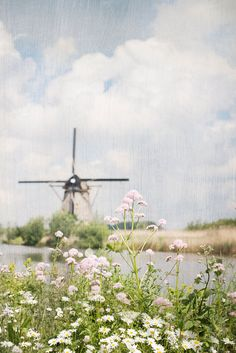 Charming Dutch windmill.