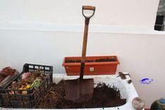 Cómo separar las lombrices del humus. Meraki, Gardens, Worm Composting, Homemade Bird Feeders, Worm Farm, Urban Gardening, Compost, Pull Apart