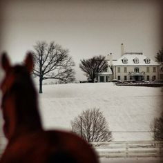Maryland's Sagamore Farm covered in a blanket of snow