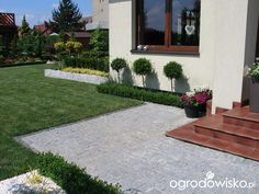 Ogród Tosi - strona 305 - Forum ogrodnicze - Ogrodowisko
