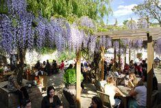 The Albion Islington    http://www.bonvivant.co.uk/blog/2012/06/24/londons-best-beer-gardens-and-terraces/