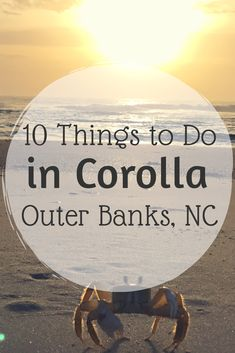 10 Things to Do in Corolla, Outer Banks – Quick Whit Travel Corolla North Carolina, North Carolina Vacations, Outer Banks North Carolina, South Carolina, Outer Banks Beach, Outer Banks Vacation, Corolla Beach, Corolla Outer Banks, Stuff To Do