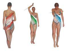 Trx, Sports, Swimwear, Russian Recipes, Polish, Hs Sports, Bathing Suits, Swimsuits, Vitreous Enamel