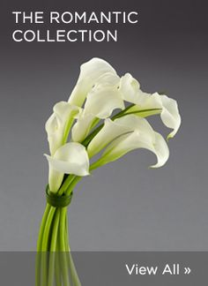 The Romantic Collection with #Calla by Vera Wang