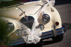 Svatební, Auto, Milovat