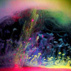 ¿Qué tienen la fotografía, la pintura y el agua en común?