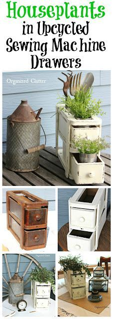 Houseplants in UPCYCLED Sewing Machine Drawers www.organizedclutter.net