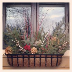 Winter window boxes #snow #winter #windowbox