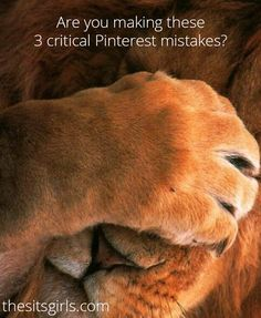 These 3 Pinterest mistakes could be causing you to lose traffic to your blog every day. Find out what they are and how to fix them!