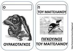 ΖΩ6 Pet Day, Literacy, Comics, Animals, Toys, Activity Toys, Animales, Animaux, Toy
