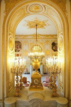 Hotel de Lassay Paris -  Salon des Elements, designed by Jules Degoullons, Mathieu Le Goupil et Jules de Joly, 1726-1730  #Rocaille #rococo #french - renovated 1845-1848