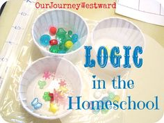 This post contains affiliate links.  Read my entire disclosure here. Why Logic? In the teacher's lounge at co-op this week, we talked about the importance of adding logic into your homeschool from ...