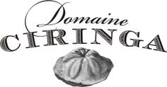 Domaine Ciringa, a winery located in Slovenia and run by Armin Tement, is known for their delicious and mineral Fosilni Breg Sauvignon Blanc. #wine #Slovenia #SauvignonBlanc #circovino #DomaineCiringa