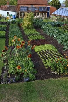 Are you dreaming of a potager kitchen garden? Learn what a potager garden is, how to design your kitchen garden with some sample kitchen garden plans and potager design examples. List of garden plants, flowers and herbs for the potager kitchen garden. Home Vegetable Garden Design, Backyard Vegetable Gardens, Potager Garden, Veg Garden, Garden Cottage, Edible Garden, Garden Beds, Vegtable Garden Layout, Garden Plants