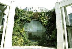 Giardini verticali- Cerca con Google