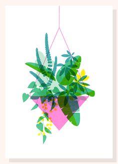 Plant Series on Behance