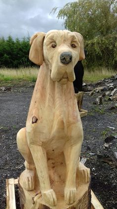 Chainsaw Wood Carving, Dremel Wood Carving, Wood Carving Art, Tree Carving, Wood Carving Patterns, Wood Creations, Animal Sculptures, Rock Art, Log Projects