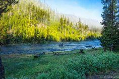 Yellowstone's Madison River