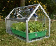 Home-grown fruits and vegetables are often better than those you buy, but sometimes you can lose sight of your greenhouse. In this project we will make an...