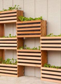 horta vertical com caixotes reutilizados