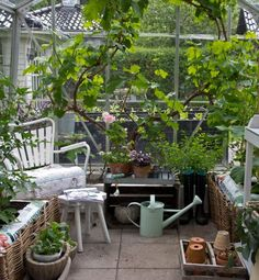 Smukke drivhuse og pavilloner | ISABELLAS