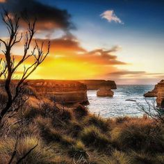 S T U N N I N G  #Regram from @hangingpixels_photo_art -  12 Apostles coastal reserve.  : Canon 5D MKIII : Canon 16-35mm II ƒ/2.8 : 1/100 ISO250 ƒ/4 : Lee GND 0.9S : VIC AU  #amazing_australia #australia #australiagram #bestofaustralia #exploreaustralia #ig_australia #iloveaustralia #seeaustralia  #worldbestshot #wow_australia #ausfeels #visitvictoria #rocks #ocean #stars #night #dusk #dawn #liveinvictoria #greatoceanroad #VisitGreatOceanRoad #sunrise #sunset #otways #canonaustralia…