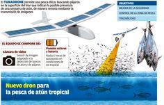 Tecnología gallega para mejorar la pesca de atún - Gráficos en FARODEVIGO.es