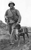 Image result for doberman ww2