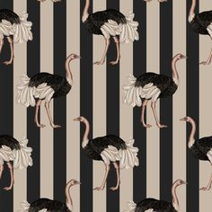 PRIDE Wallpaper Blush / Off Black * Wonderwall * The Inner Interiorista